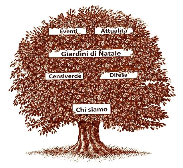 rsz_img_come_creare_un_albero_genealogico_con_uno_schema_2976_orig2
